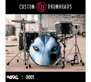 Bass Drum Reso Head no 0003
